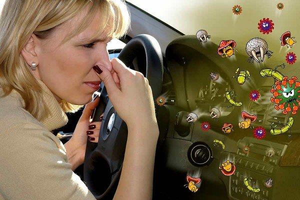 Микроорганизмы в автокондиционере