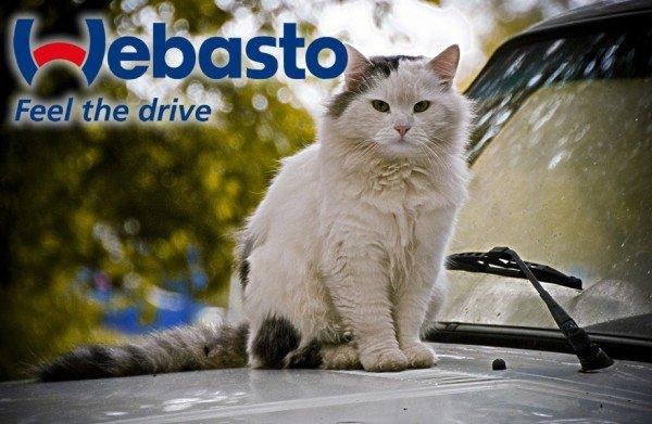 Обогреватель двигателя Webasto
